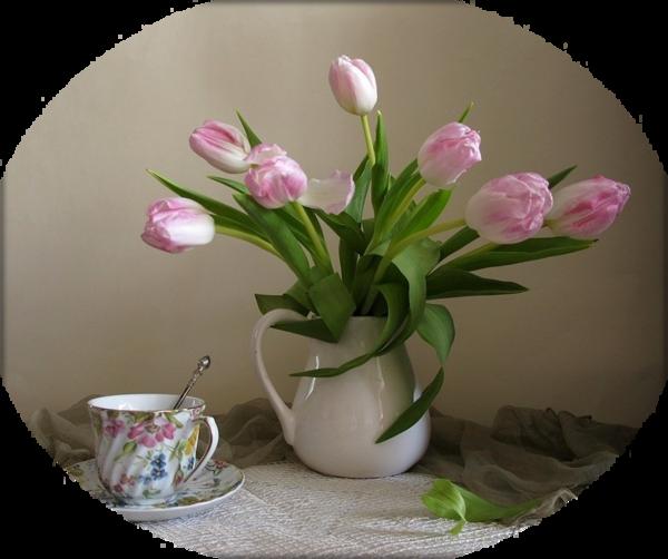 joli bouquet de fleurs offert par mon amie yvonne. Black Bedroom Furniture Sets. Home Design Ideas